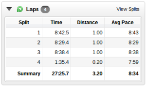 running-garmin-splits